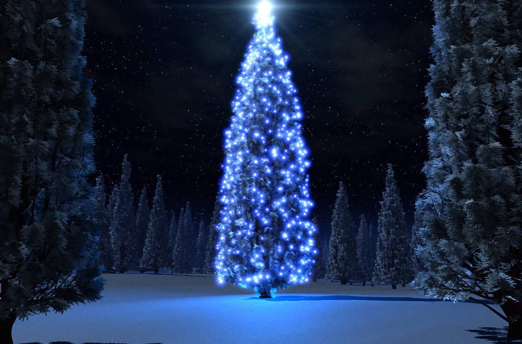 Specjalne życzenia świąteczne