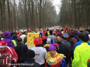 Kolorowy las biegaczy