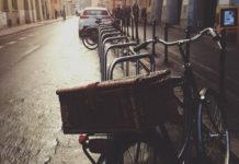 rower w miejskiej dżungli